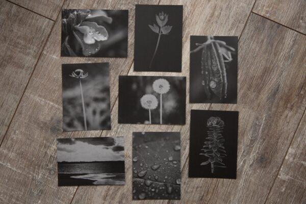 postkartenset monochrome memories