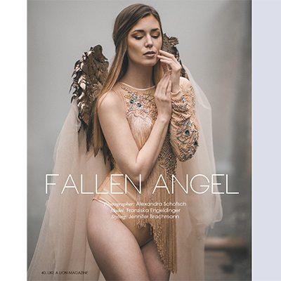 Strecke Like a Lion Magazine Fallen Angel